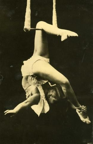 circus angelica on trapeze